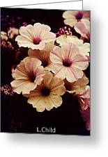Solanaceae Greeting Card