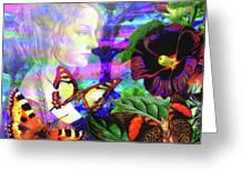 Solar Daydreamer Greeting Card