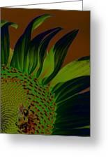Solar Sunflower Greeting Card
