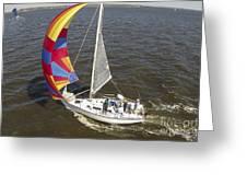 Sole Vento Charleston South Carolina Greeting Card
