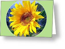 Solid Sunshine Greeting Card