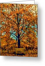 Solitary Fall Greeting Card