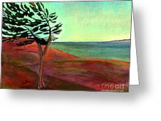 Solitary Pine Greeting Card