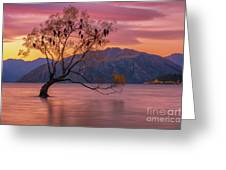 Solitary Willow Tree Greeting Card