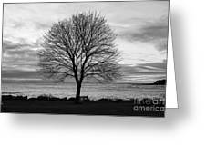 Solitude 3, New Castle Sunrise Greeting Card