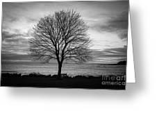 Solitude 4, New Castle Sunrise Greeting Card