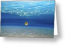 Solo Under The Turquoise Sea Greeting Card