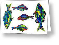 Something Fishy Greeting Card