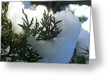 ''sometimes In Winter.....'' No.8, Tue--15jan2013 Greeting Card