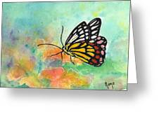 Song Of Joy - Butterfly Greeting Card