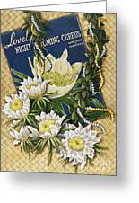 Song Of The Cereus Greeting Card