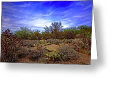 Sonoran Desert H1819 Greeting Card