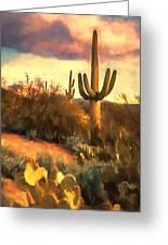 Sonoran Desert Morn Greeting Card