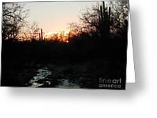 Sonoran Sundown Greeting Card