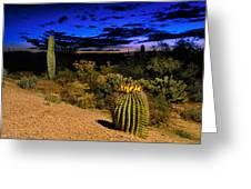 Sonoran Twilight Greeting Card