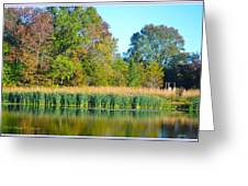 Soothing Reflections Greeting Card