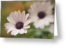 Soprano Dreams Greeting Card