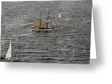 Soren Larsen Tall Ship Enters Sydney Harbour Greeting Card