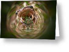 Sorry Said The Frog 1 Greeting Card