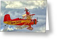 Soucy In Flight Greeting Card
