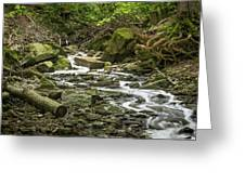 Sounds Of A Mountain Stream Greeting Card