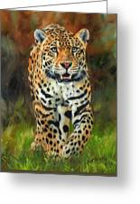 South American Jaguar Greeting Card