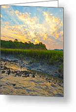 South Carolina Summer Sunrise Greeting Card