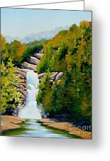 South Carolina Waterfall Greeting Card