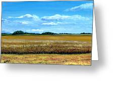 South Dakota Summer Greeting Card