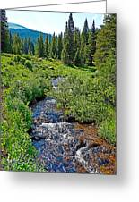 South Fork Ranch Creek Colorado Greeting Card