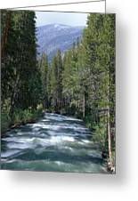 South Fork San Joaquin River - Kings Canyon National Park Greeting Card