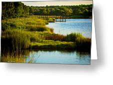 South From The Causeway Huntington Beach State Park Sc Greeting Card
