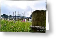 South Haven Marina Greeting Card