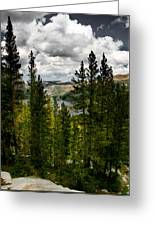 South Lake Through The Pines Greeting Card