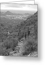 South Mountain Phoenix Greeting Card