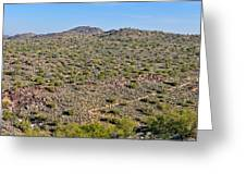 South Mountain Trail Greeting Card