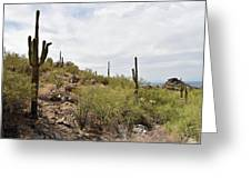 South Mountain2 Greeting Card