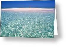 South Pacific Sandbar Greeting Card