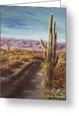Southern Arizona Greeting Card by Jack Skinner