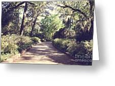 Southern Beauty 2 - Tallahassee, Florida Greeting Card