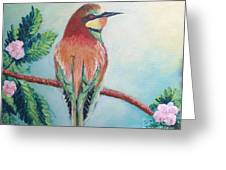 Southern Bee-eater Greeting Card