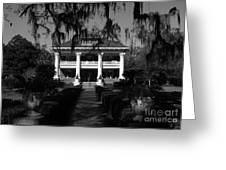 Southern Bell Greeting Card