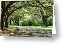 Southern Bench Greeting Card