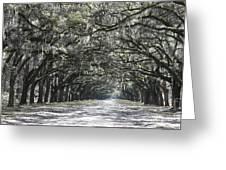 Southern Homecoming Greeting Card