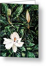 Southern Magnolia Bud And Bloom Greeting Card
