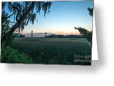 Southern Marsh Charm Greeting Card
