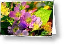 Southern Missouri Wildflowers 1 Greeting Card