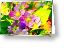 Southern Missouri Wildflowers 1 - Digital Paint 1 Greeting Card