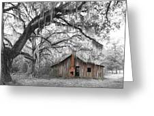 Southern Past Ll Greeting Card