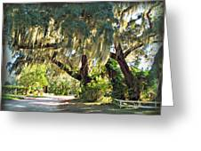 Southern Pathway Greeting Card